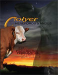 2013 Colyer Herefords 33rd Annual Production Sale