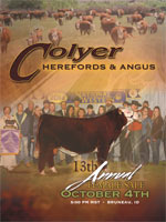 2014 Colyer Herefords and Angus Sale Catlog - View Sale Catalog