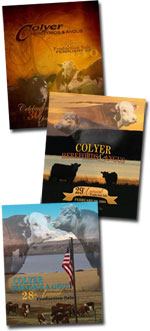 Colyer Annual Production Sale Catalog