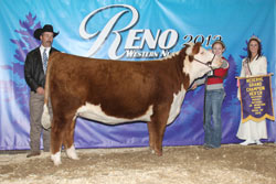 Reserve Grand Champion - Junior Show - Click to enlarge