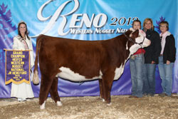 Champion Female - Junior Show - Click to enlarge