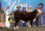 C KRC 1008X Miles 4288 ET - Click to See Results