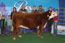 Champion Bred and Owned Female - Click to enlarge